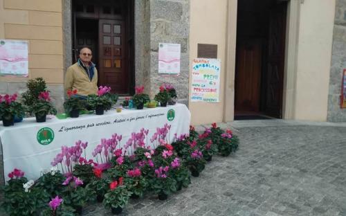 Barzanò (LC), 29.09.19